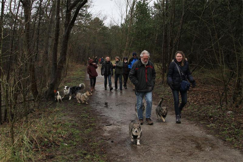 vastgotaspets_wandeling_noordwijkerhout4